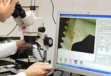 Microscopic Inspection
